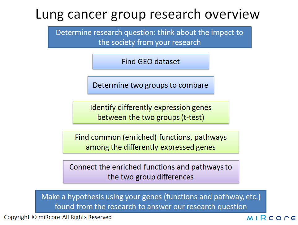 lung cancer research overview