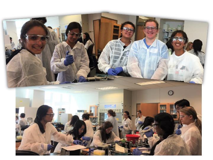 biotechnology summer camp 2016 slide7